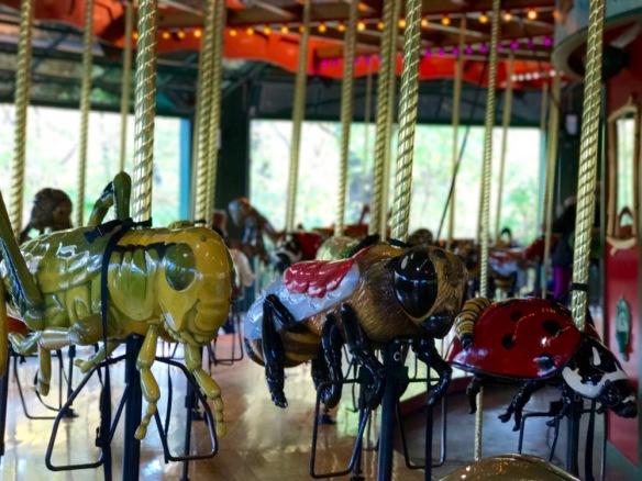 Bug Carousel del Bronx Zoo