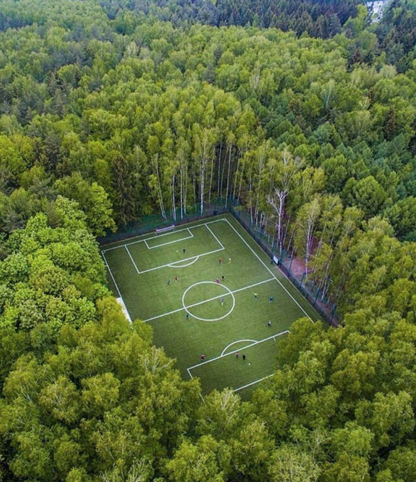 Fútbol en el Bosque - Moscú